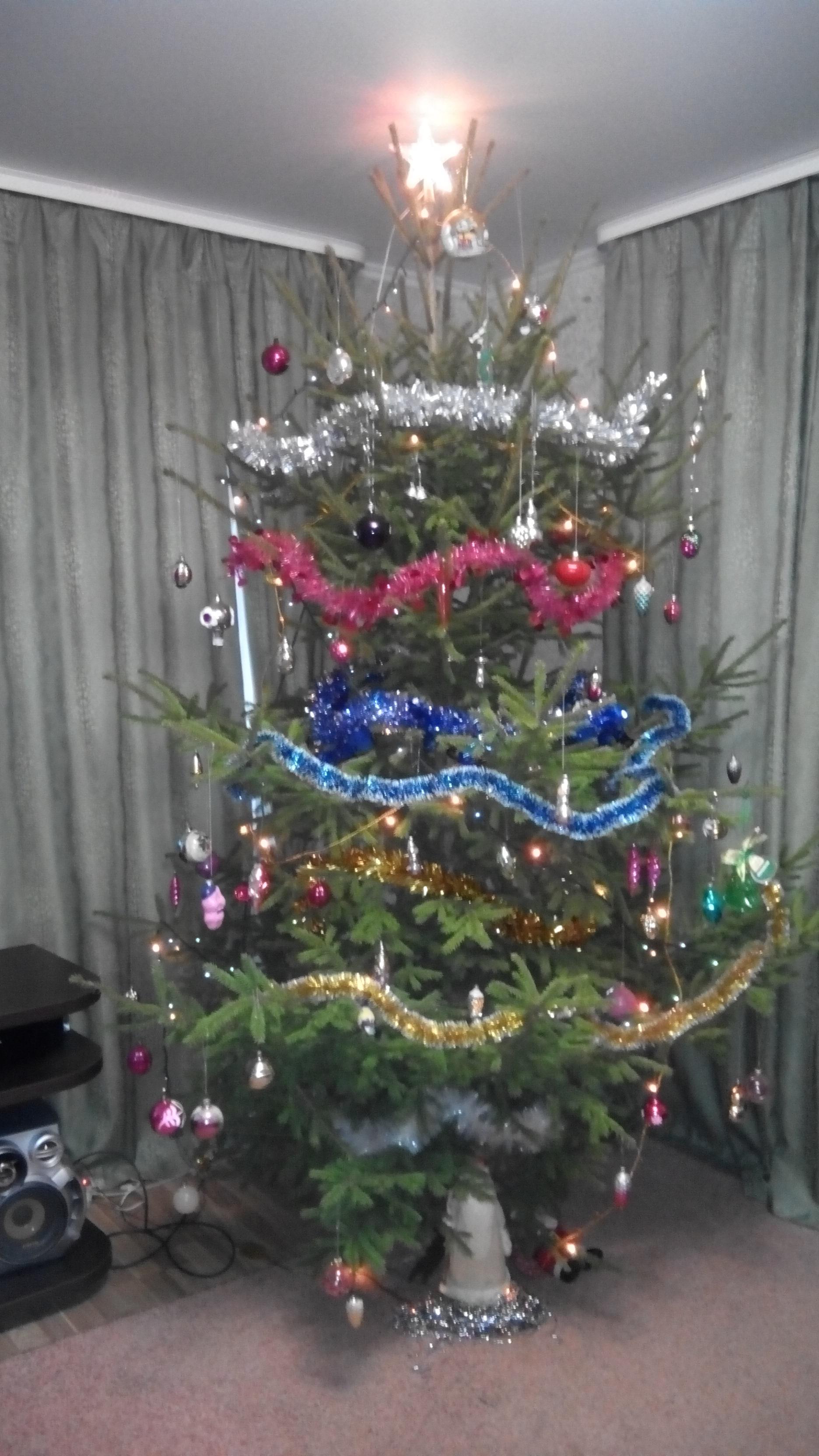 елка. Блиц: новогодняя елочка