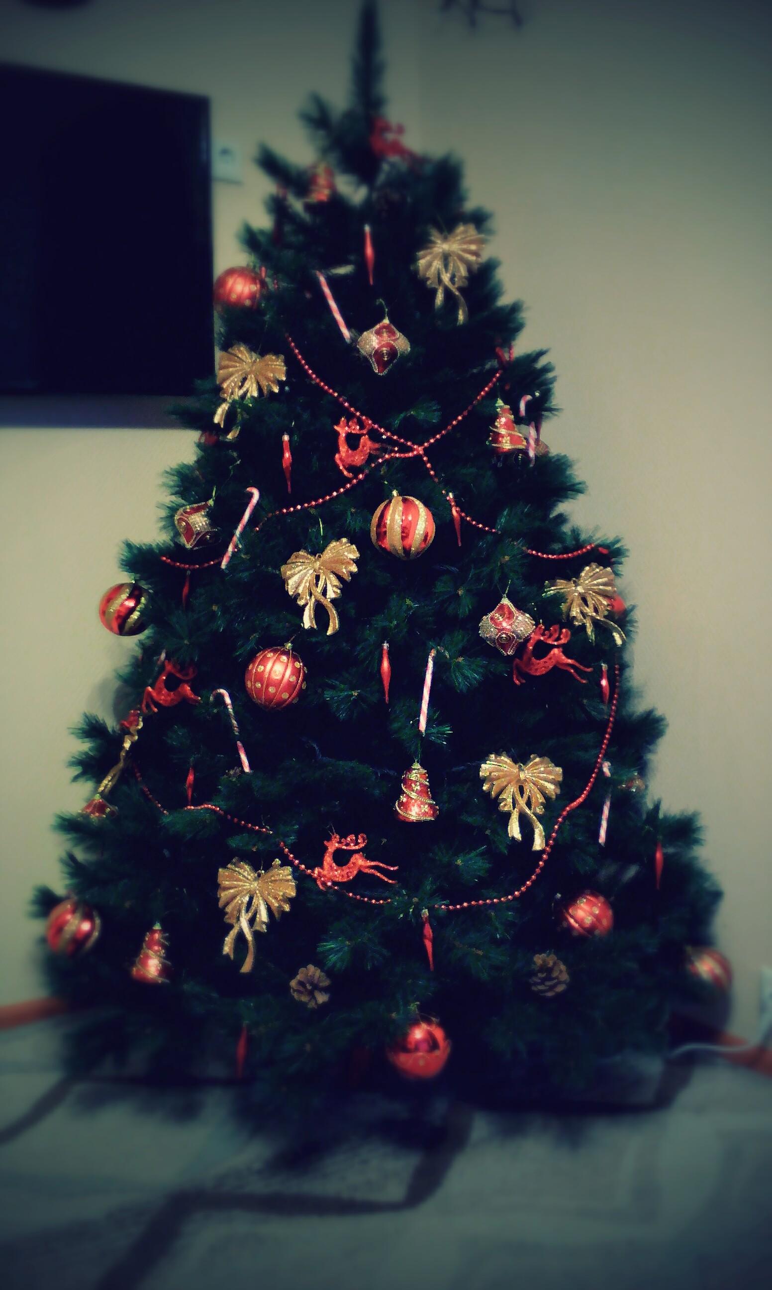 Наша новогодняя красавица!!!. Блиц: новогодняя елочка