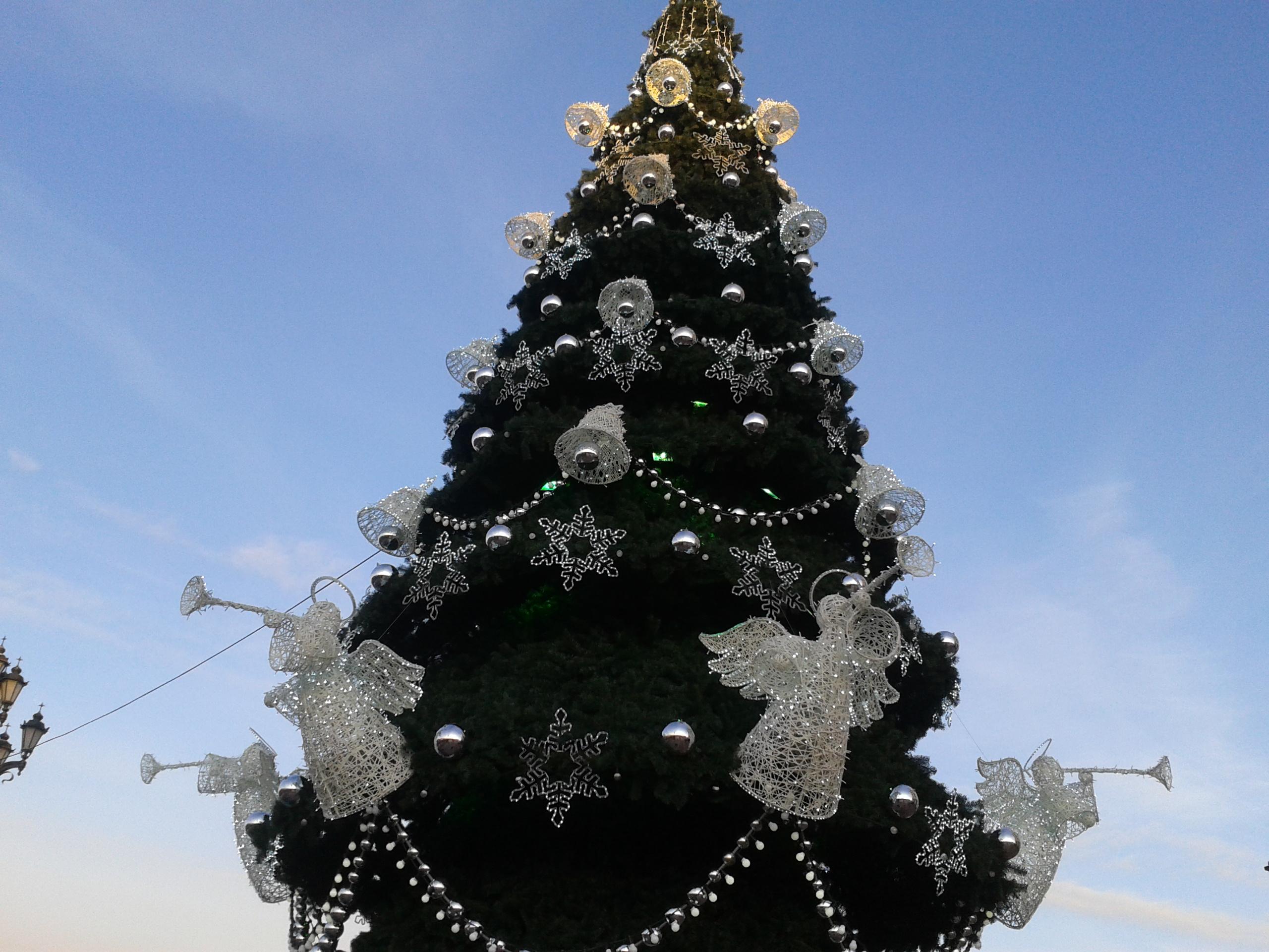 Рождественская елочка. Блиц: новогодняя елочка