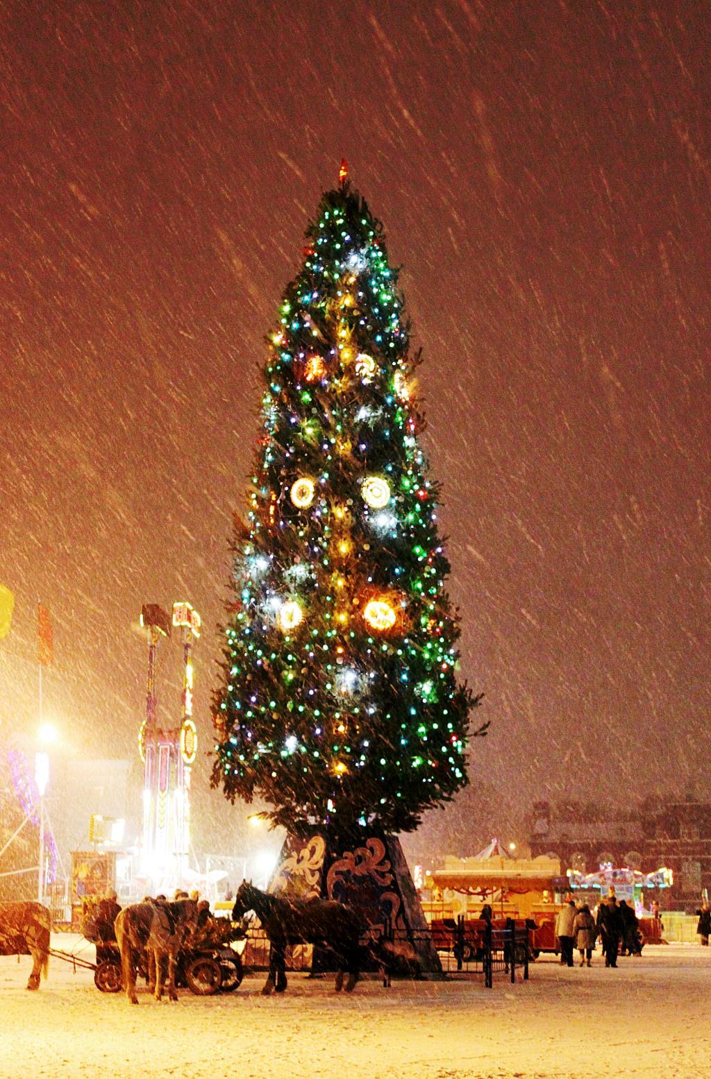 Новогодняя сказка Саратова. Блиц: новогодняя елочка