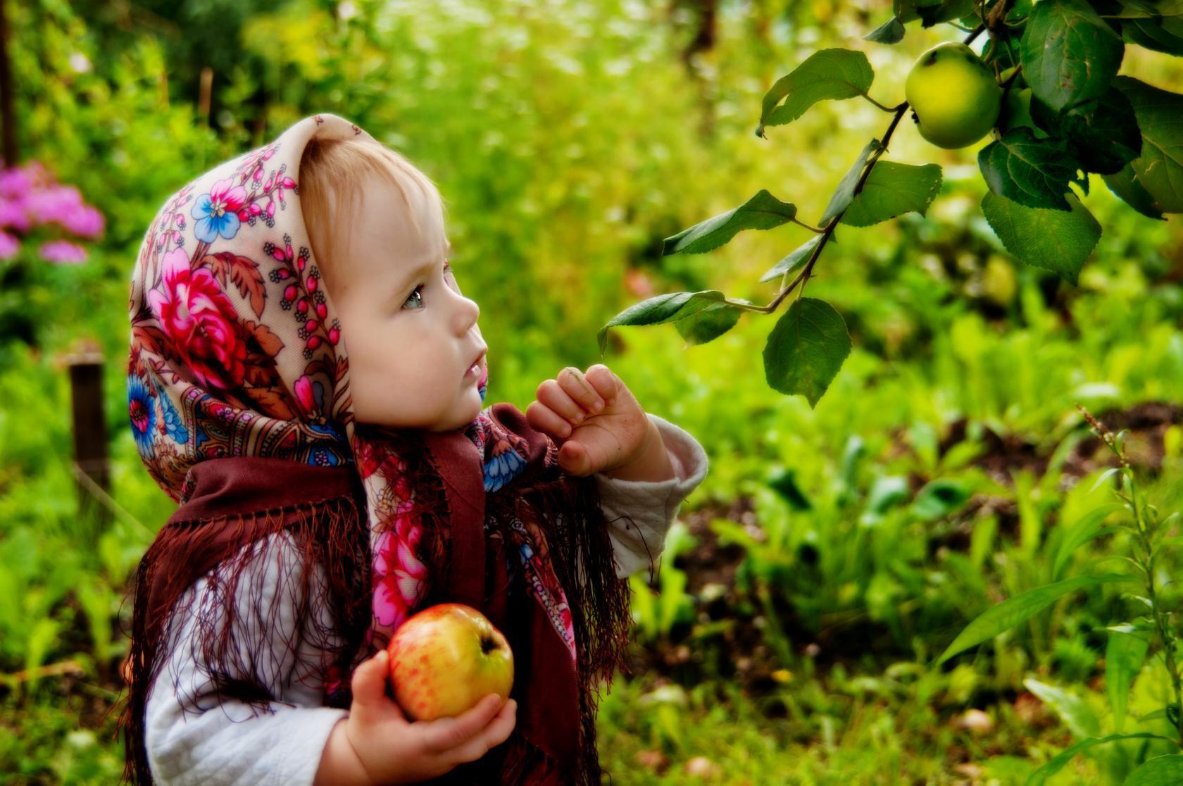 Яблочки). Дачники и дачницы