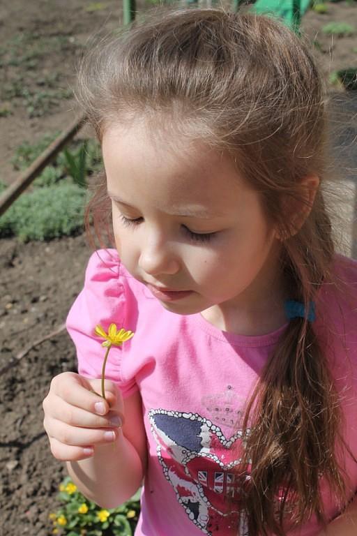 Первый цветочек!. Дачники и дачницы