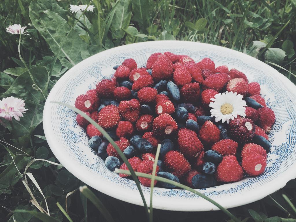 Дачные ягоды. Блиц: ягоды