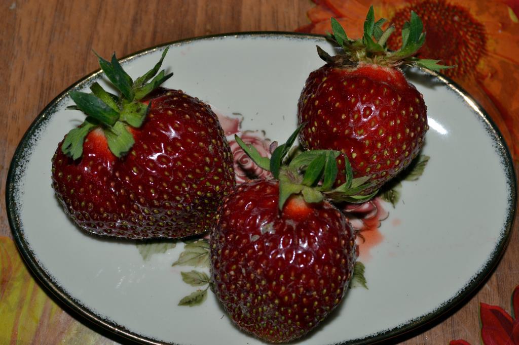 Сочная и вкусная клубника!. Блиц: ягоды