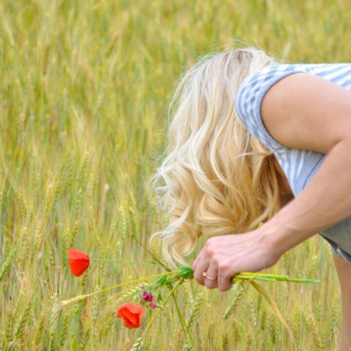 маки для Юлии. Цветы
