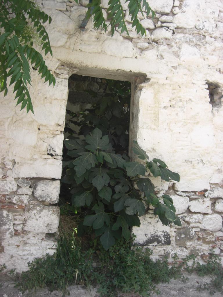 Стена одного из заброшенных домов на о. Кос. Блиц: стены