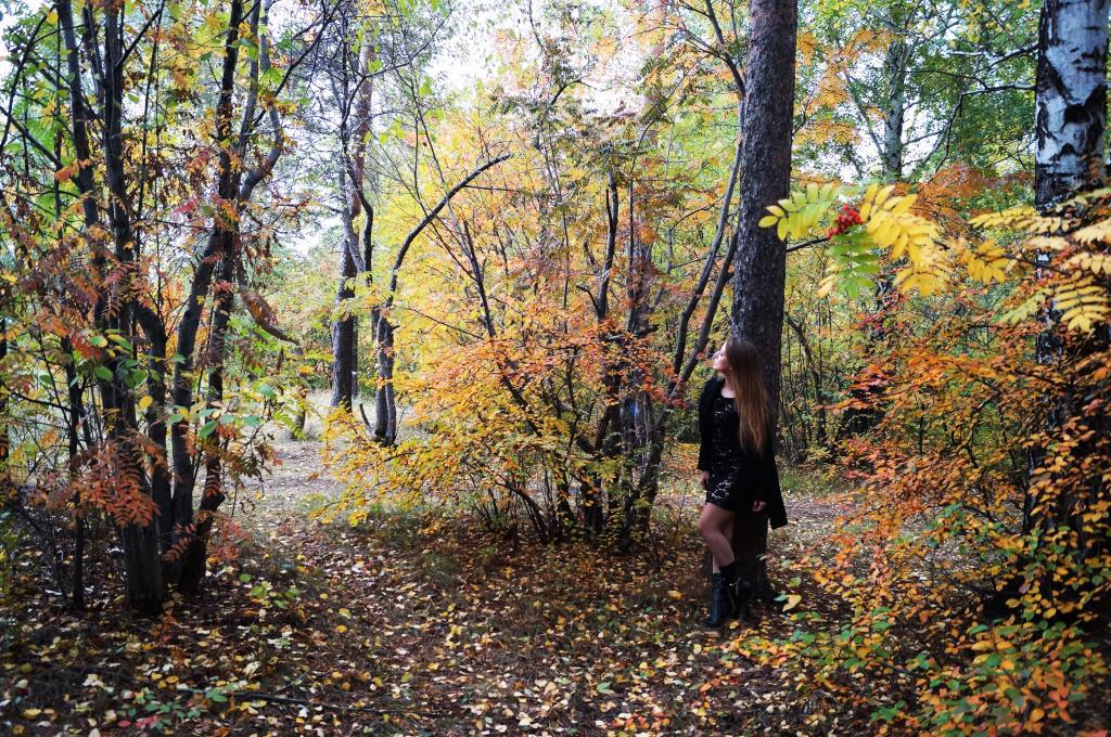 такая осень. Осенний образ