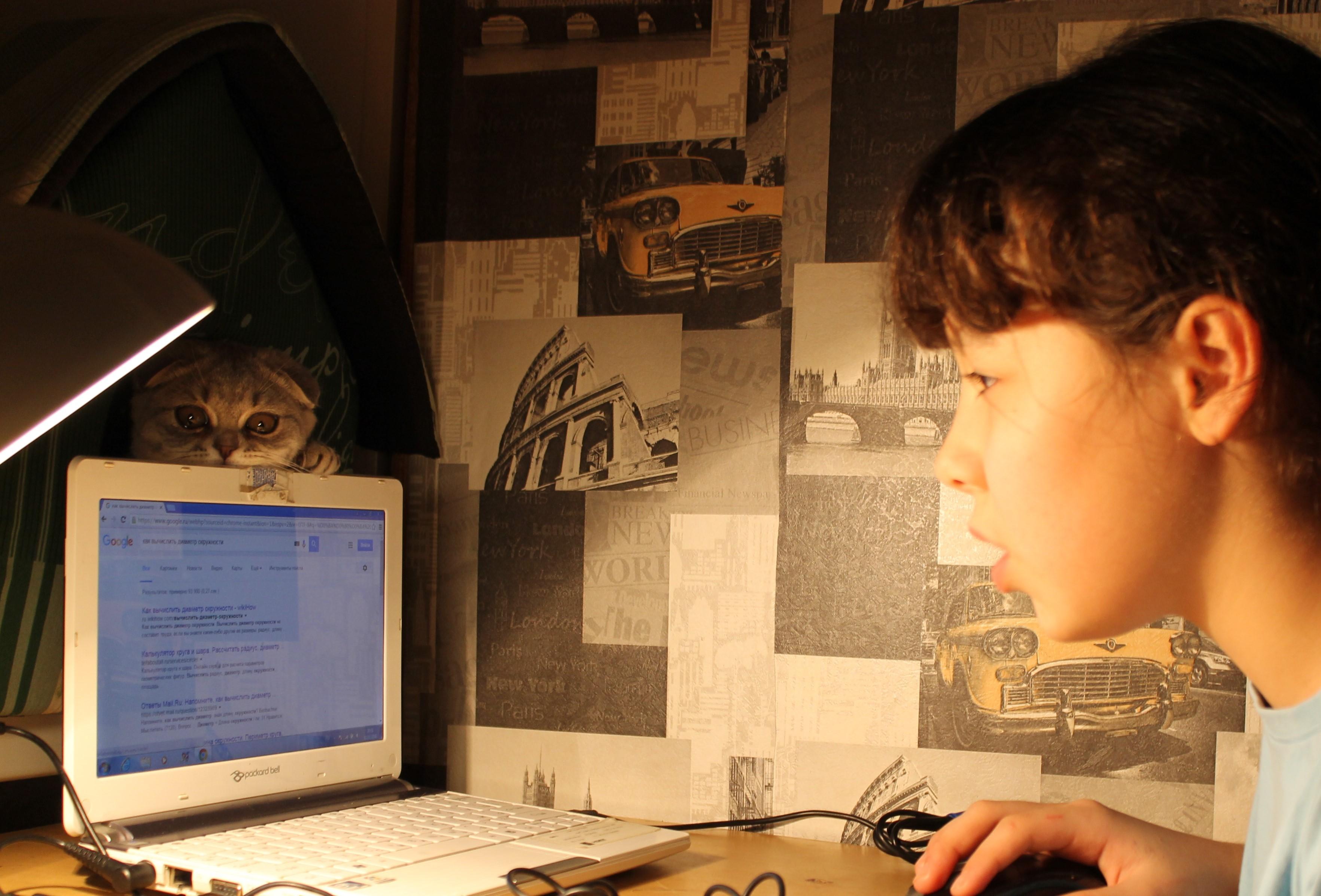 Суфлер в домике. Дети в интернете