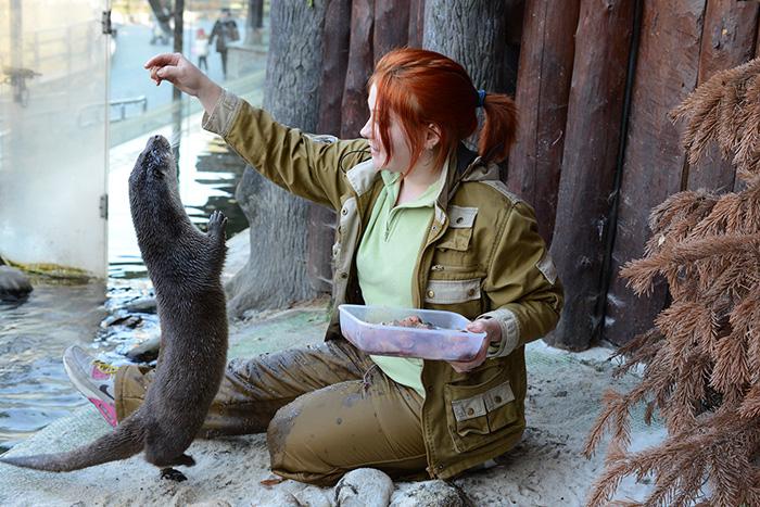День города в Московском зоопарке