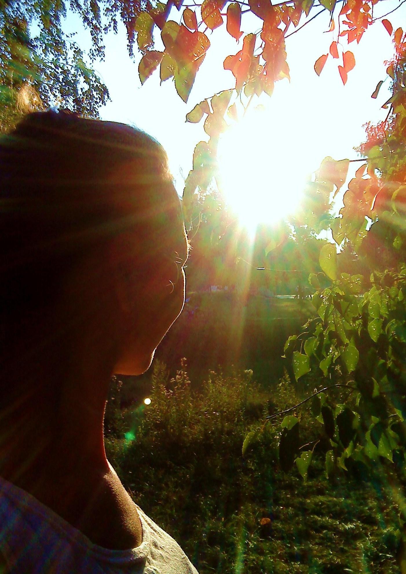 Осеннее солнце. Осенний образ