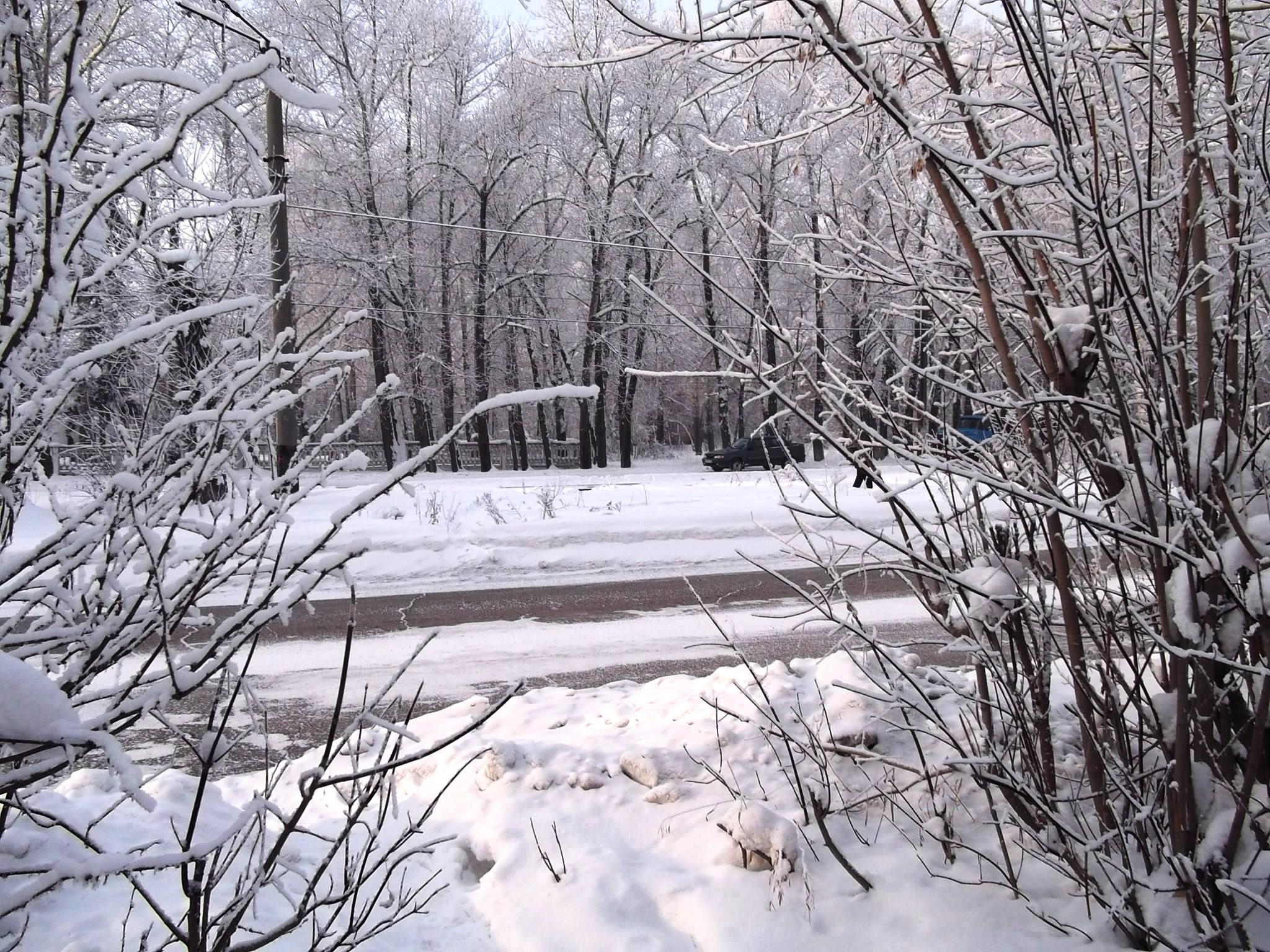 Зимний день. Блиц: зима