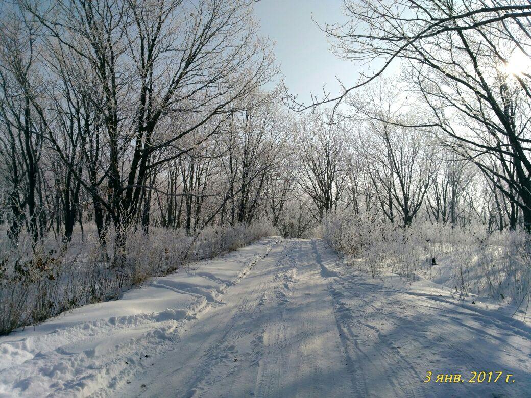 Зимняя дорога'. Блиц: зима