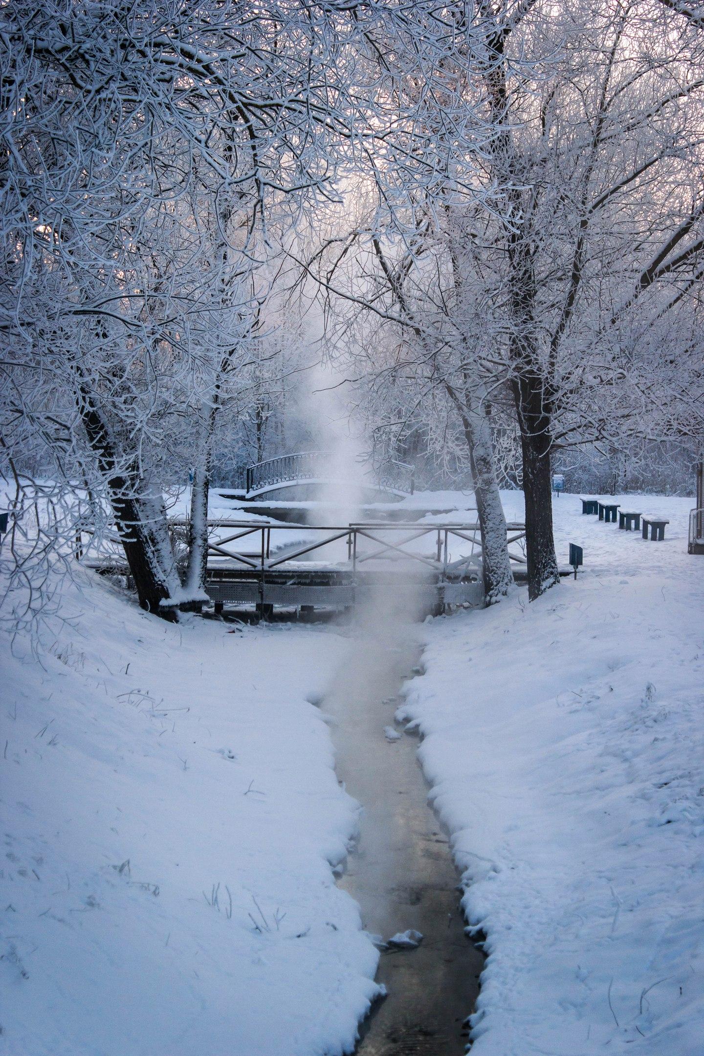 Городской парк. Блиц: зима