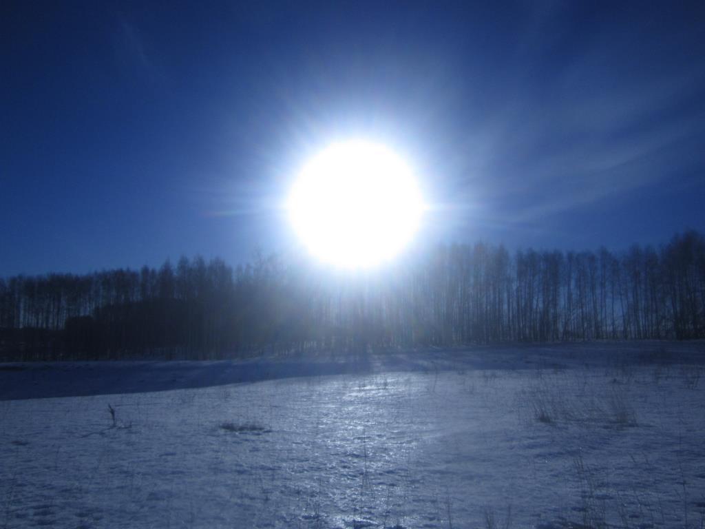 красота природы. Блиц: зима