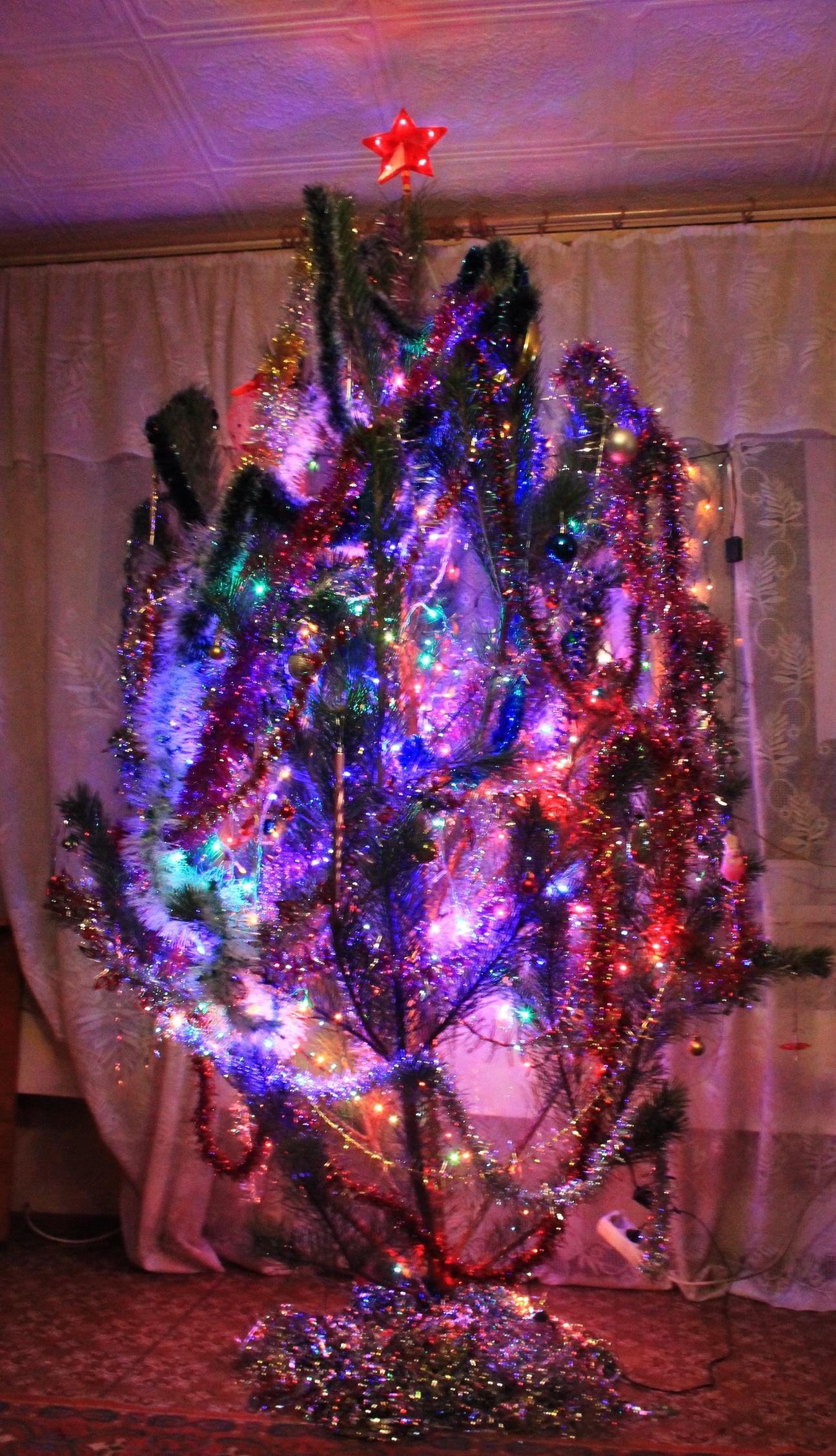 Наша ёлочка!. Блиц: новогодняя елочка