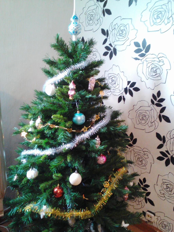 Наша елка. Блиц: новогодняя елочка