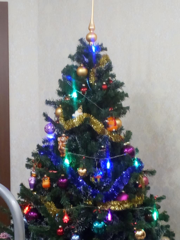 Наша ёлка). Блиц: новогодняя елочка
