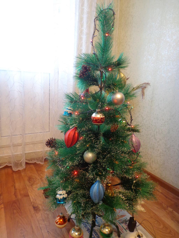 Сказка в нашем доме. Блиц: новогодняя елочка