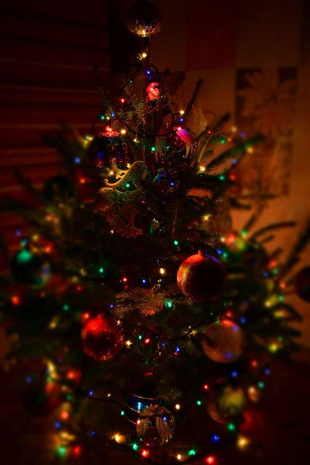 новогодняя. Блиц: новогодняя елочка