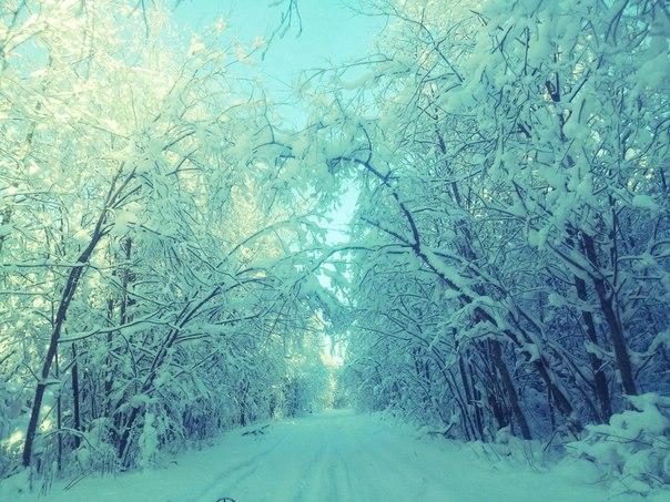 Блиц:зима. Блиц: зима