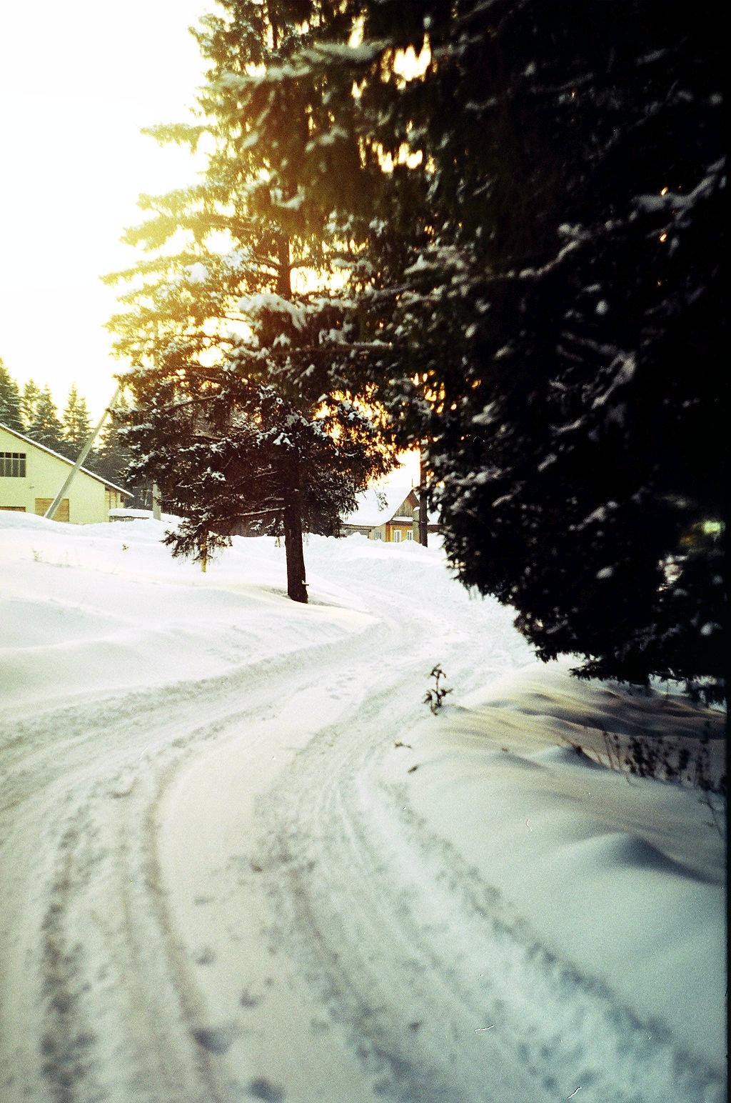 Зимняя дорога. Блиц: зима