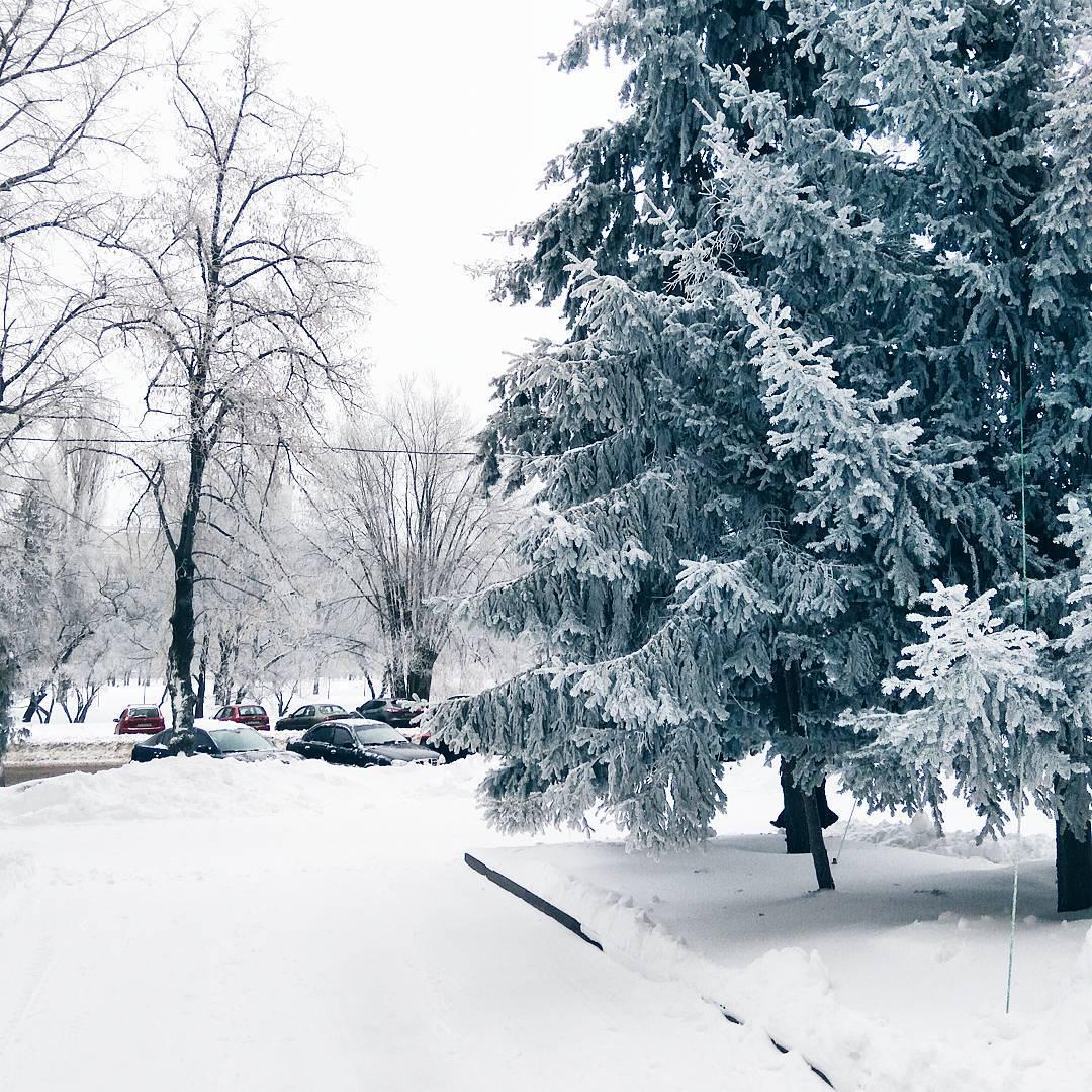 Харьковская зима. Блиц: зима