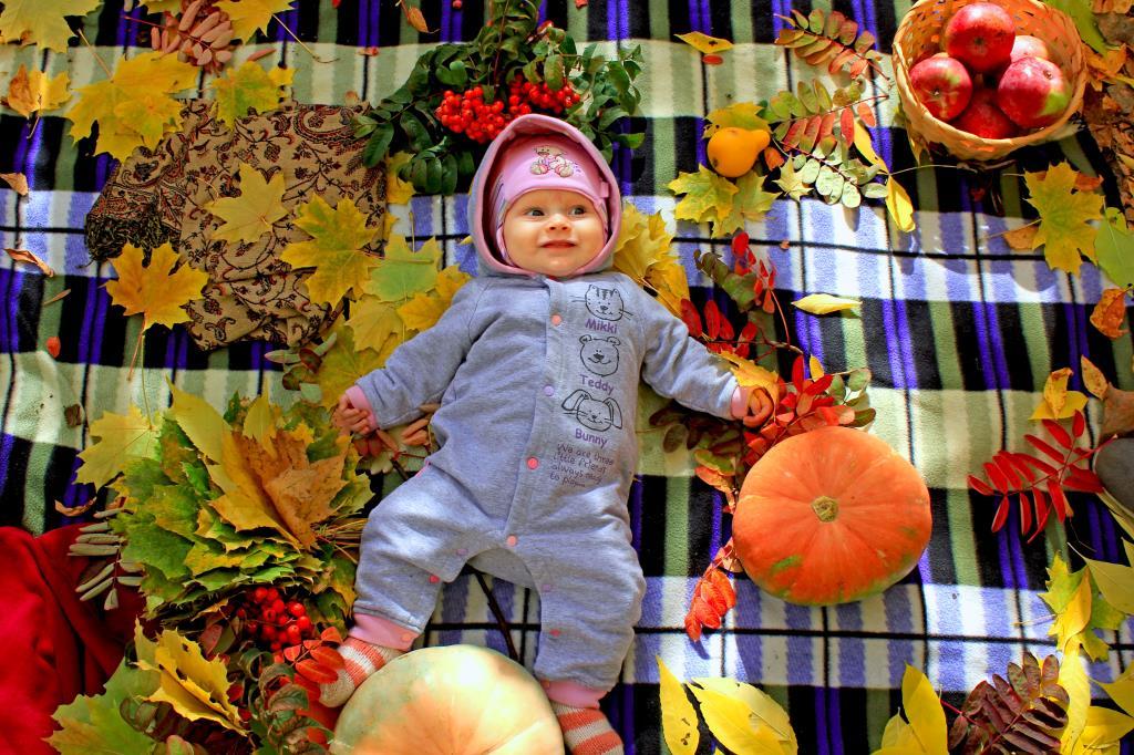 Краски Осени. Краски осени