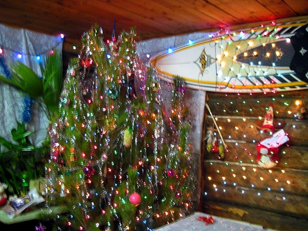 Ёлочка в доме у сёрфера!!!. Блиц: новогодняя елка