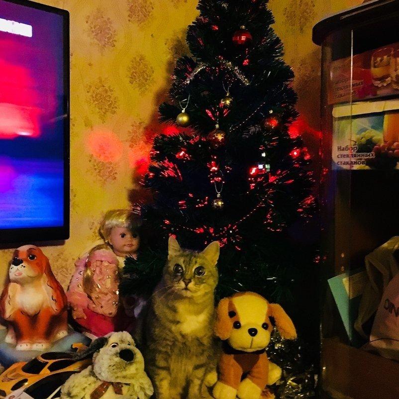 В ожидании.... Блиц: новогодняя елка