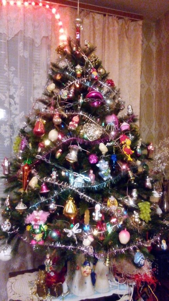 Наша елка лучше всех!. Блиц: новогодняя елка