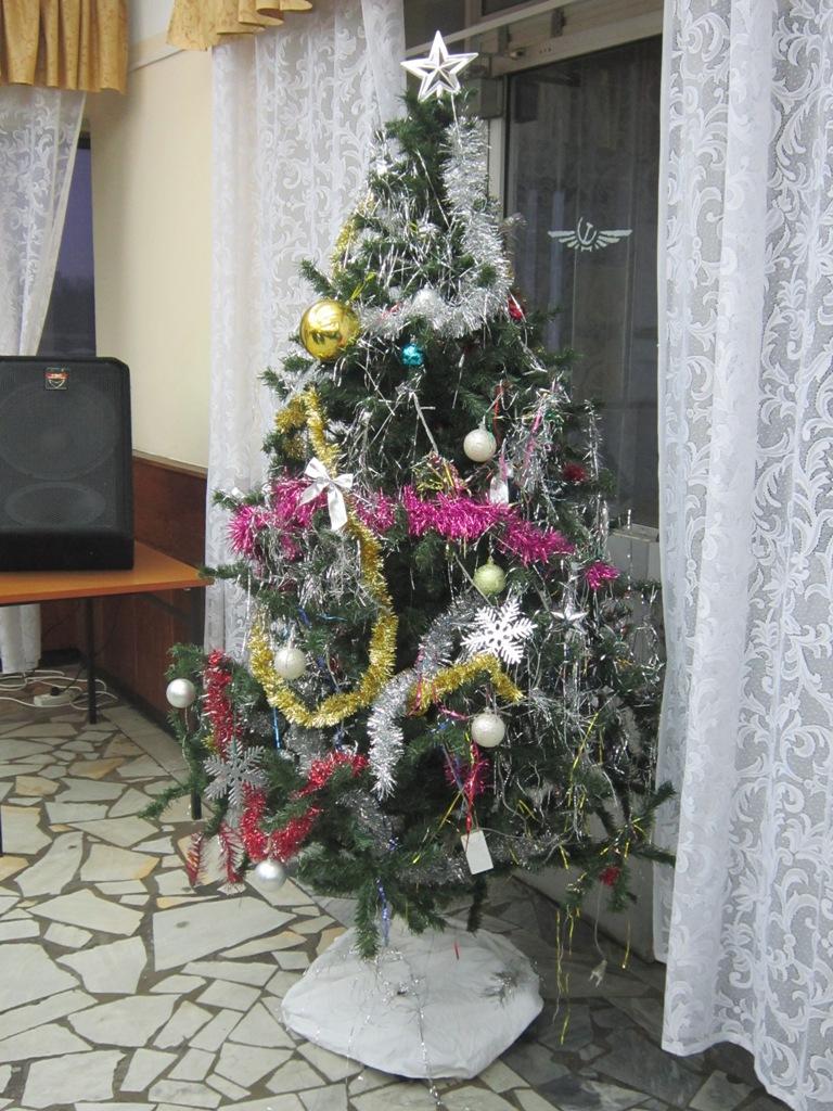 С наступающим Новым Годом!. Блиц: новогодняя елка