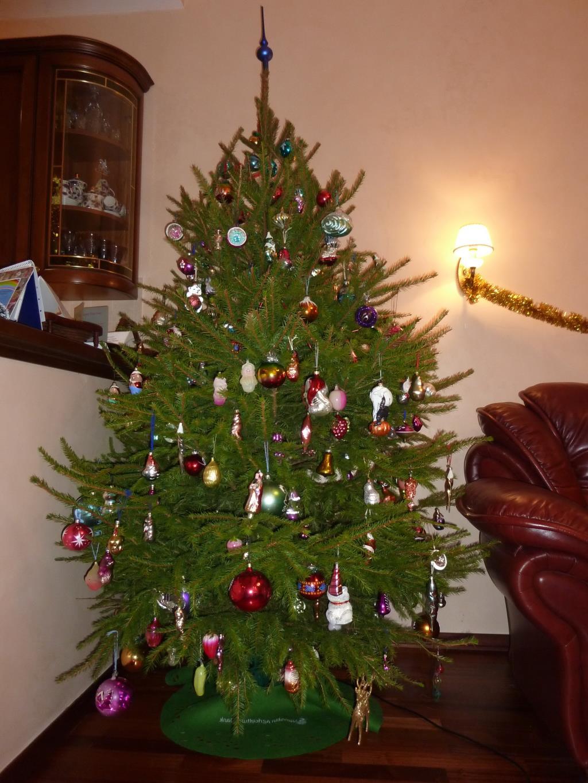 наша живая елочка. Блиц: новогодняя елка