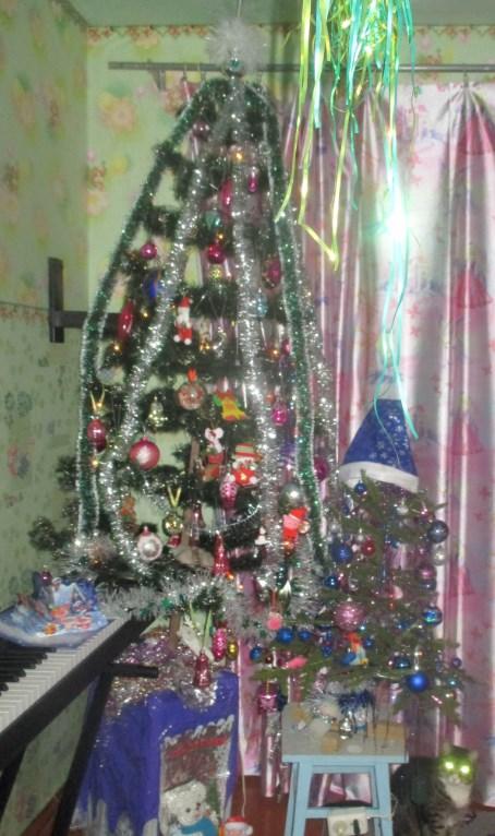 лучший подарок. Блиц: новогодняя елка
