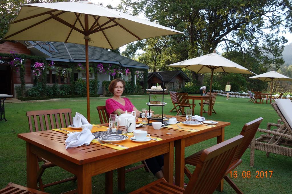 Отель на чайной плантации. За чашкой чая
