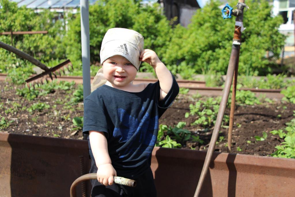 Буду поливать, в саду помогать!. Дела житейские
