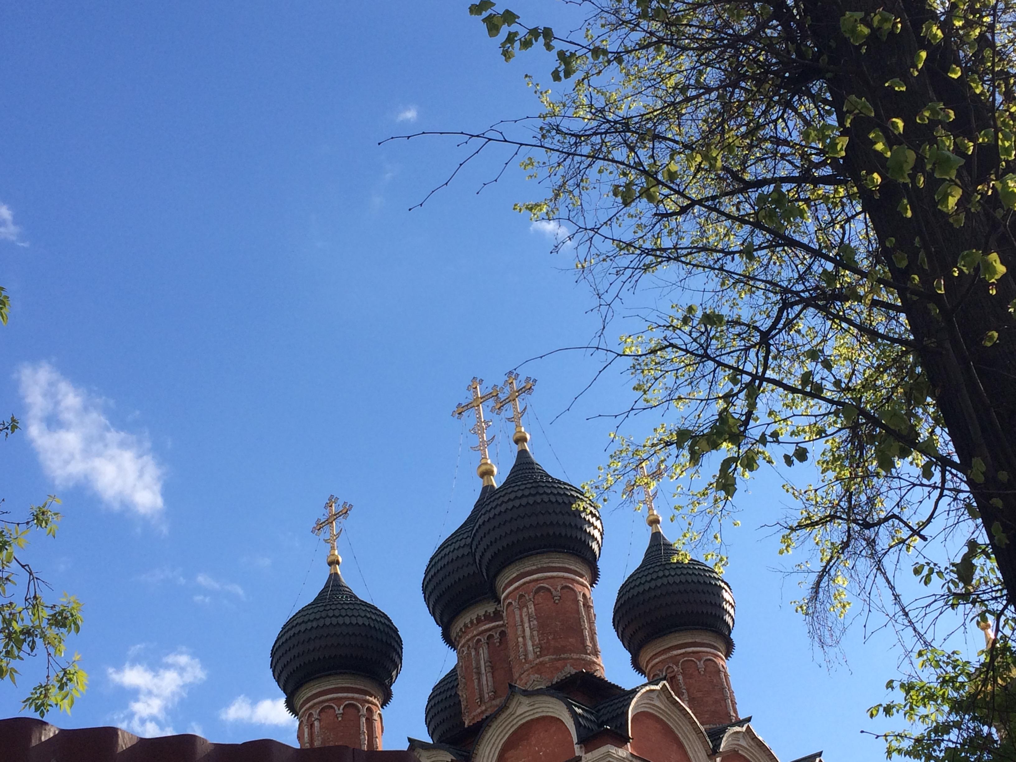 Высоко-Петровский мужской монастырь. Купала. . Блиц: купола