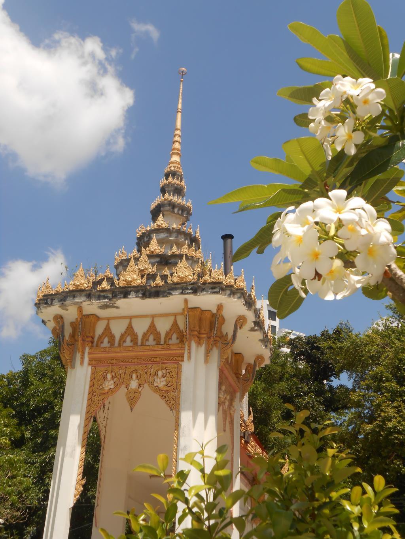 Тайланд. Блиц: купола