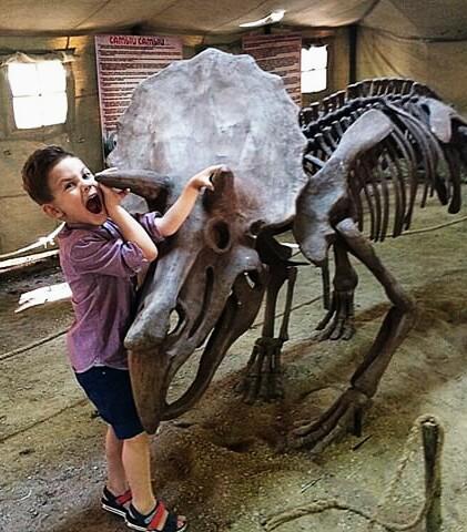 Мне не страшен динозавр.... Любимые динозавры