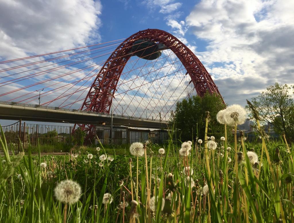 Живописный мост, Москва. Блиц: мосты