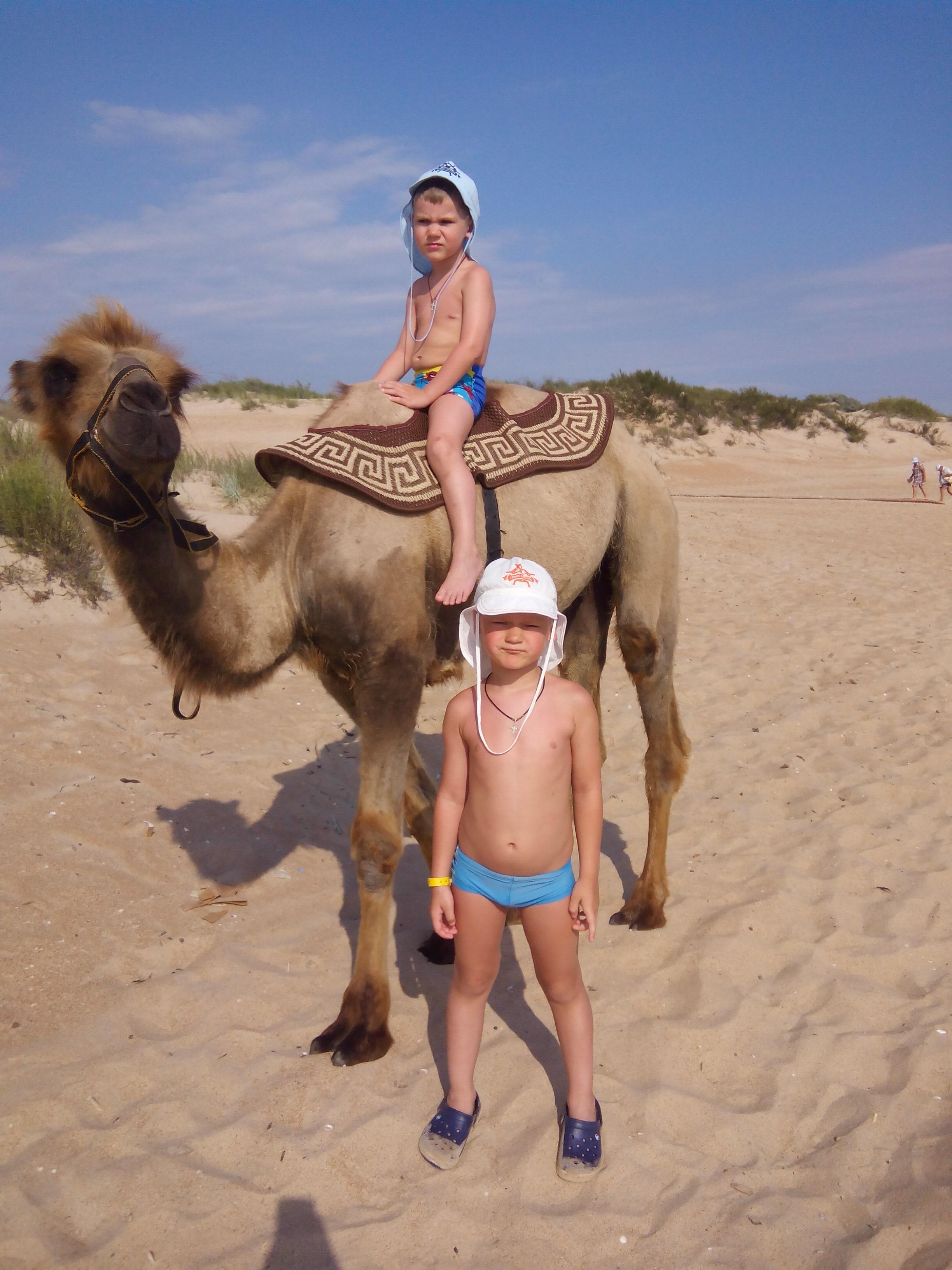Дети в пустыне!. Привет из отпуска!
