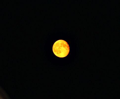 ночное солнце!. Блиц: луна