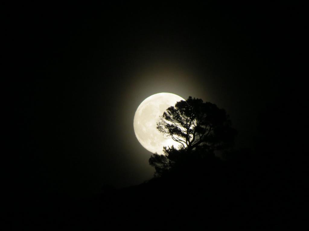 Восход луны на Ибице.. Блиц: луна