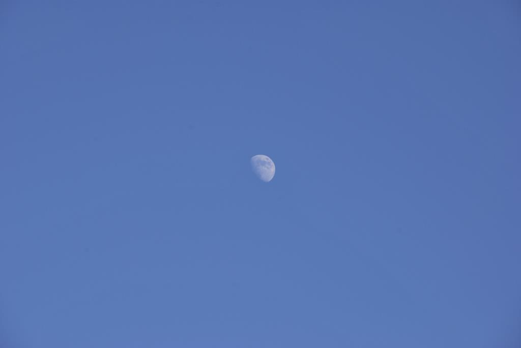 Луна днём. Блиц: луна