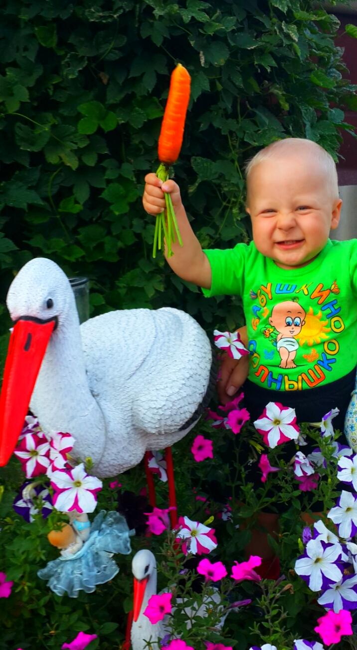 'Совершенно летние' Яркое лето, морковного цвета.. Совершенно летние!