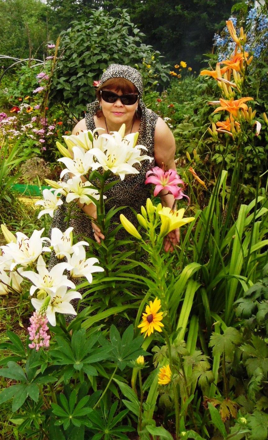 Прекрасные лилии!. Совершенно летние!