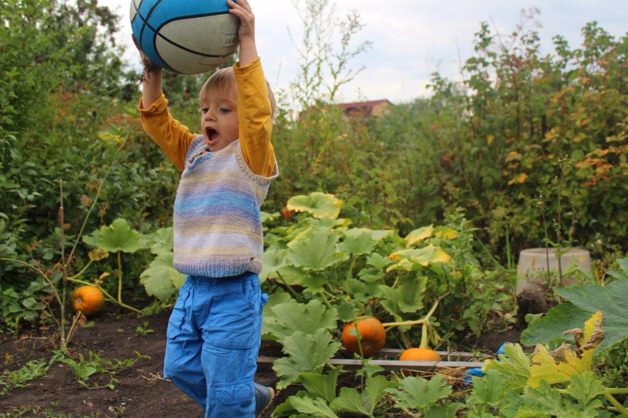 Игры во время сбора урожая. Краски осени