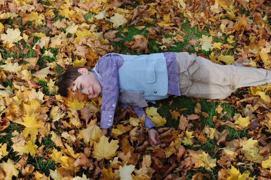 Детство в кленовых листьях. Краски осени