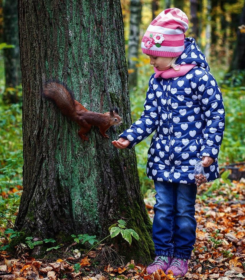 Однажды в осеннем лесу я белочку встретил))). Краски осени