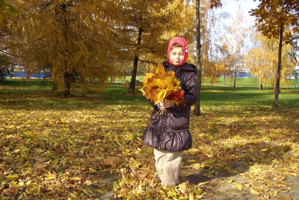 Листопад, листопад, листья желтые летят!. Краски осени