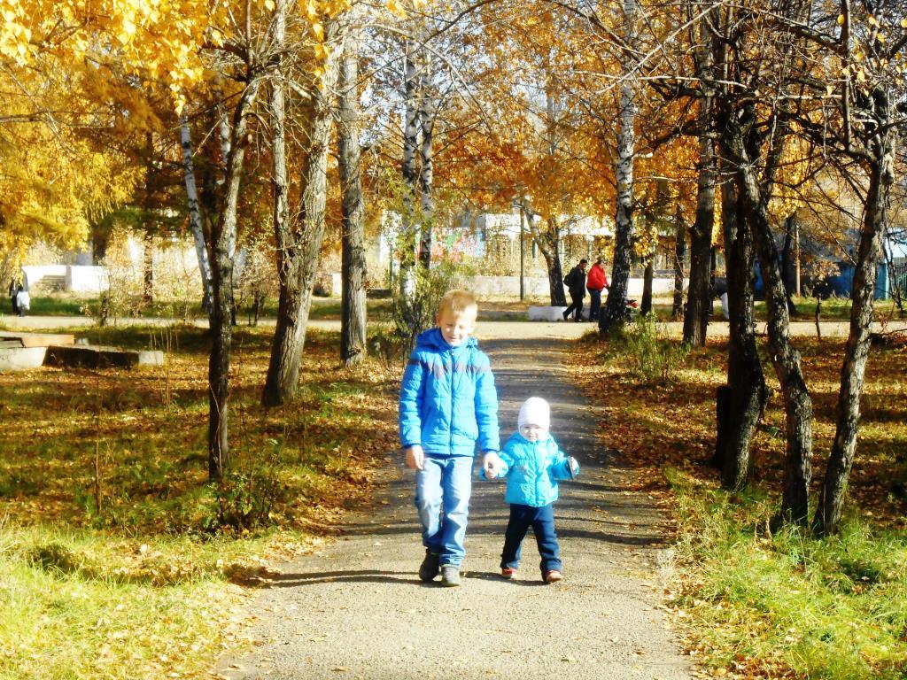 Осень в парке. Краски осени